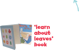 Learn about leaves book